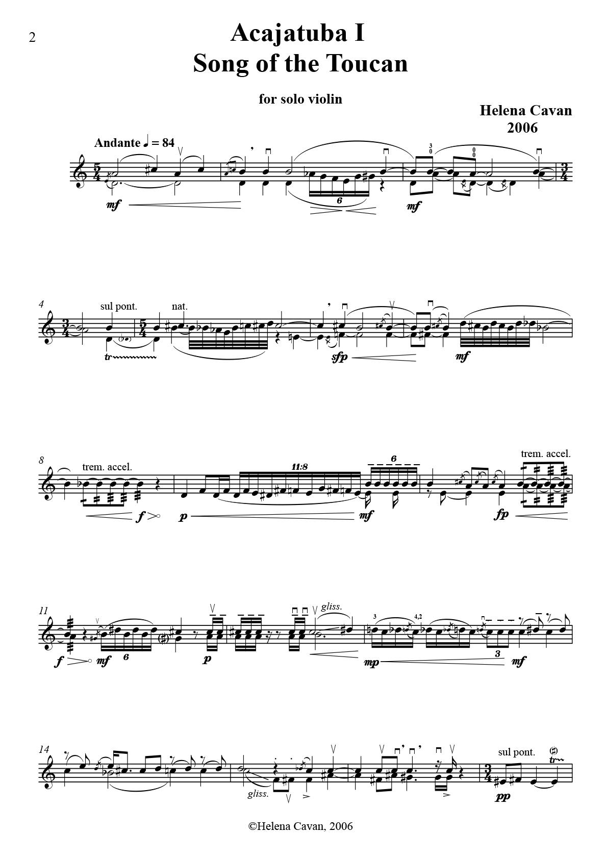 Acajatuba I Song of the Toucan-1.jpg