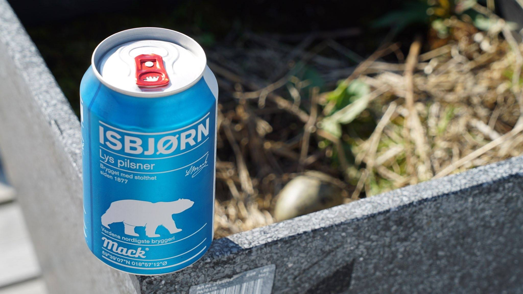 Beer terrasse1.jpg