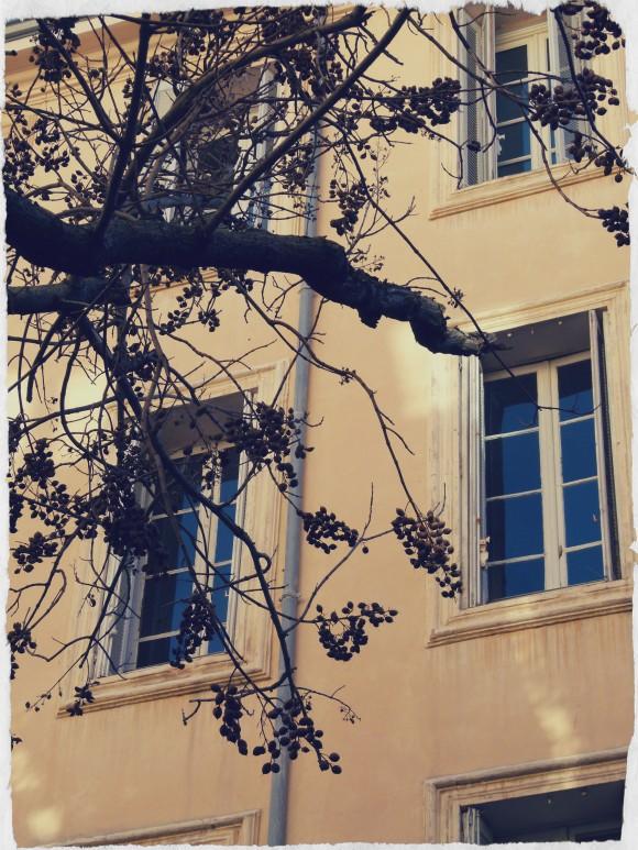 aix-windowsill-e1389307613906.jpg