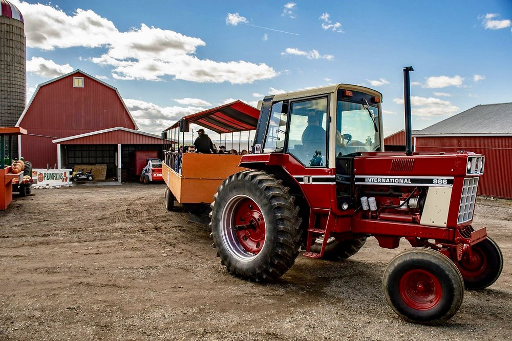 New Salem Corn Maze Hayrides