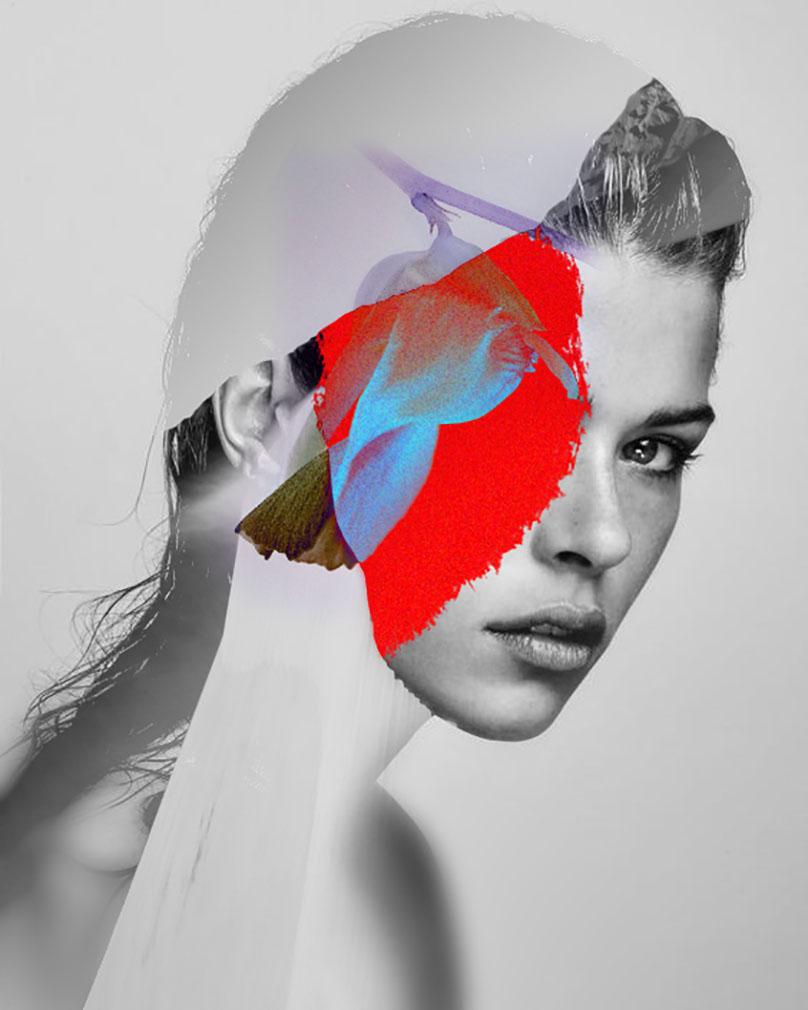 contemporary arts feed -