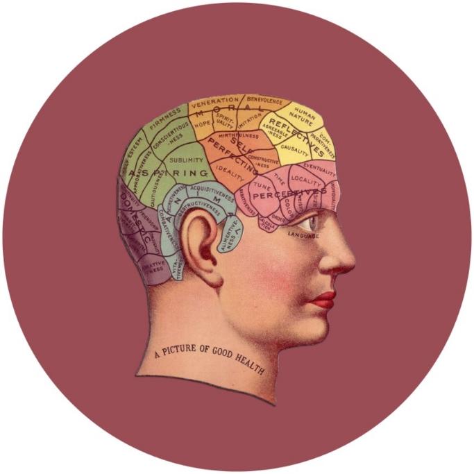 2 phrenology.jpg