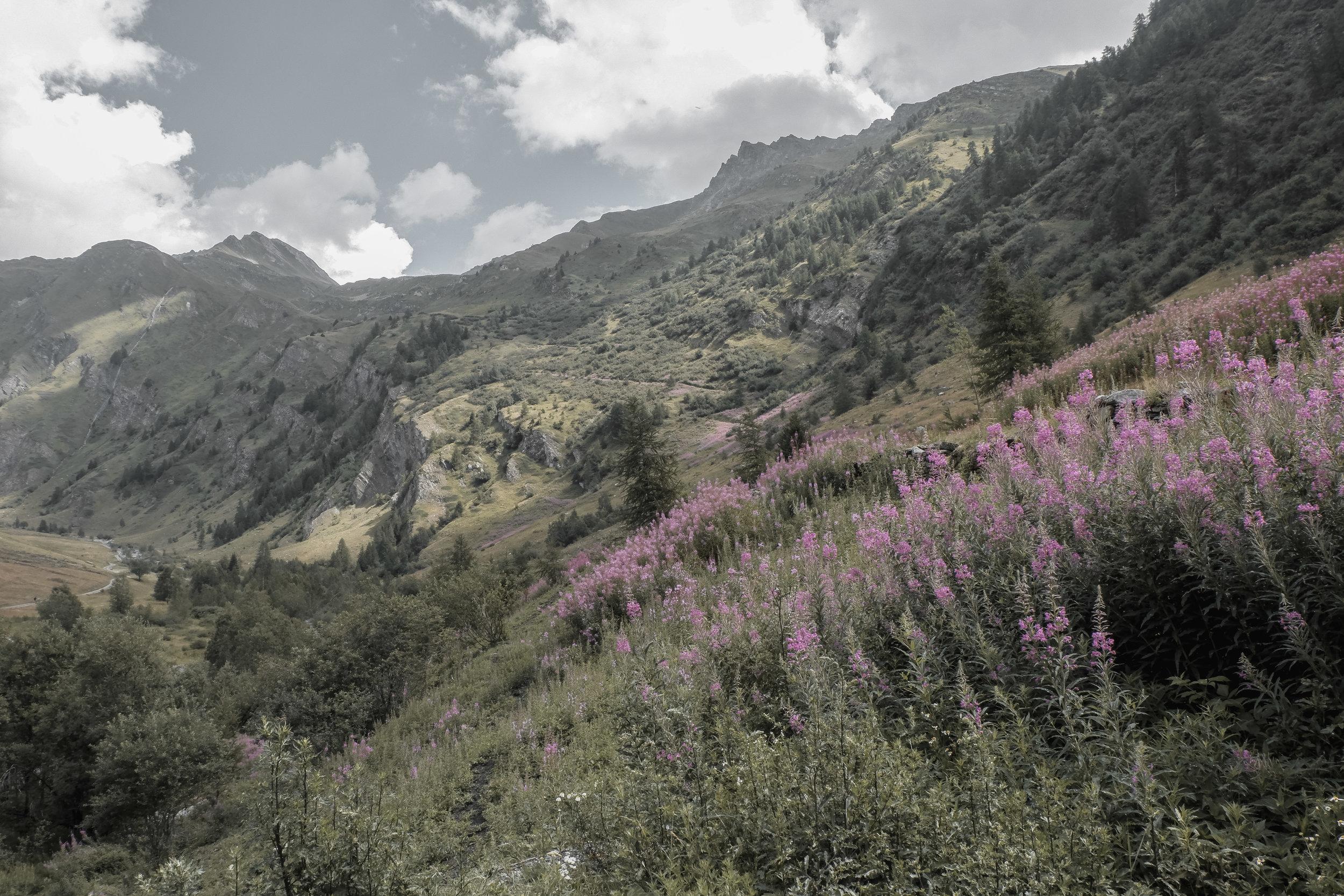 Valle d'Aosta (3).jpg