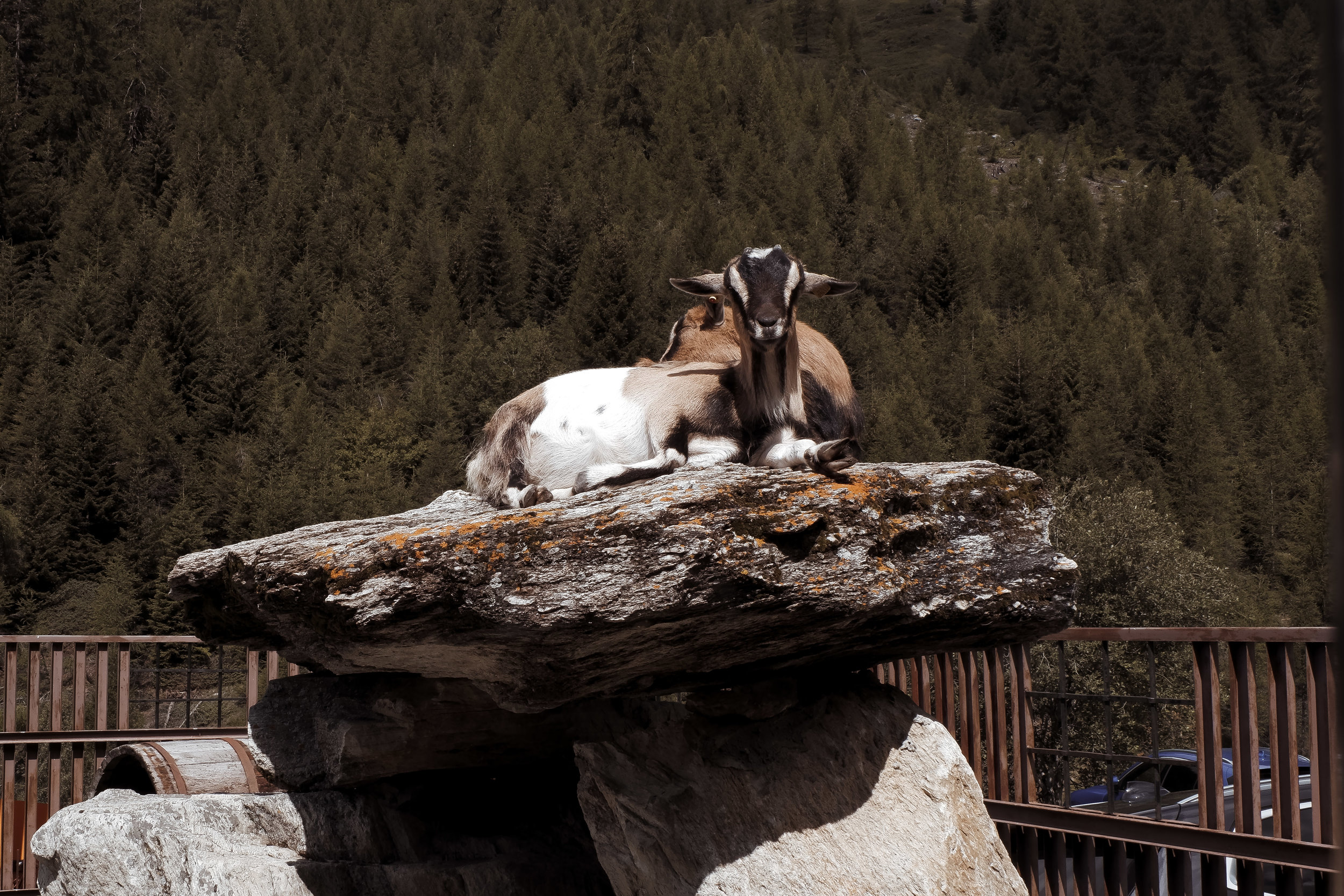 Valle d'Aosta (7).jpg