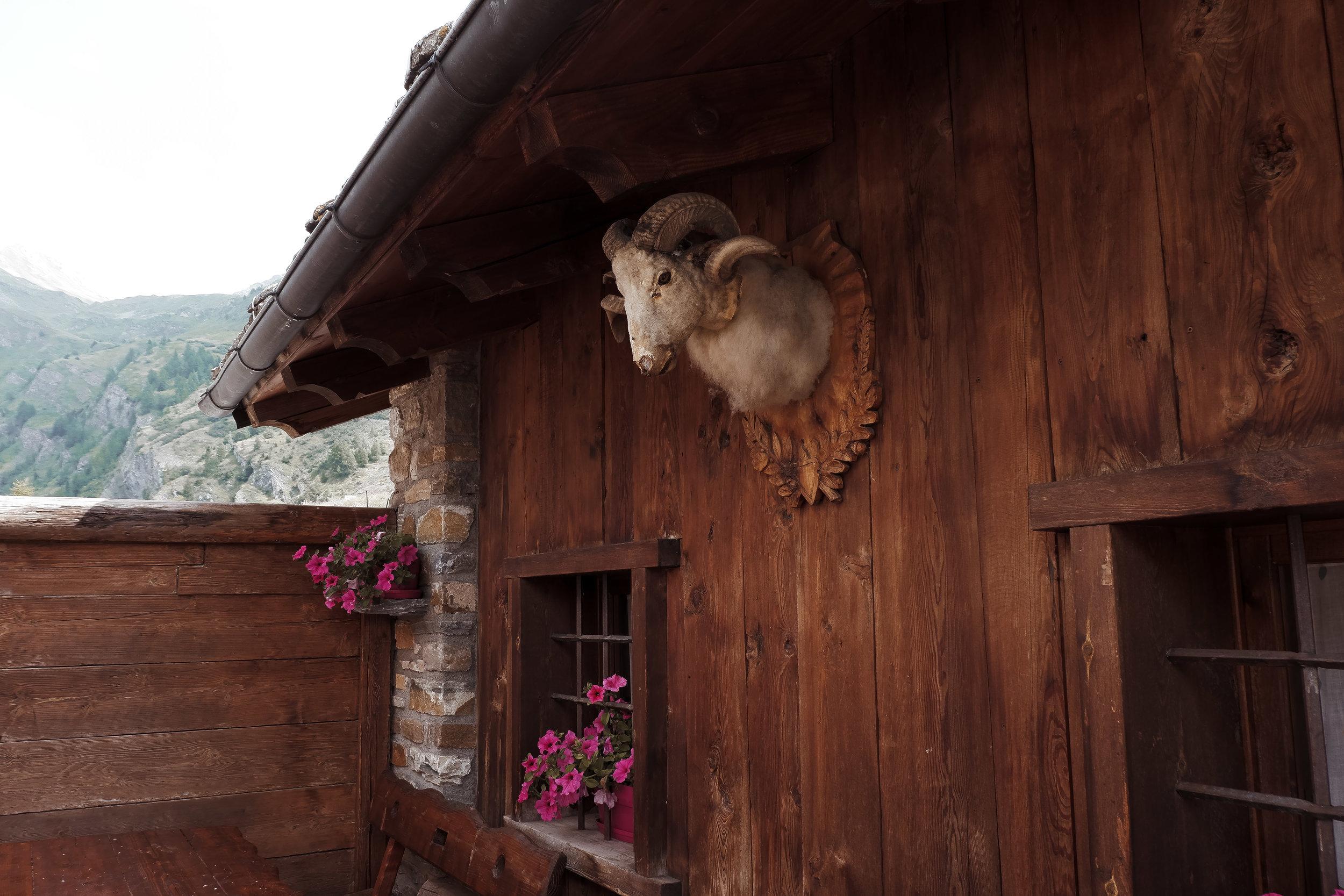 Valle d'Aosta (10).jpg