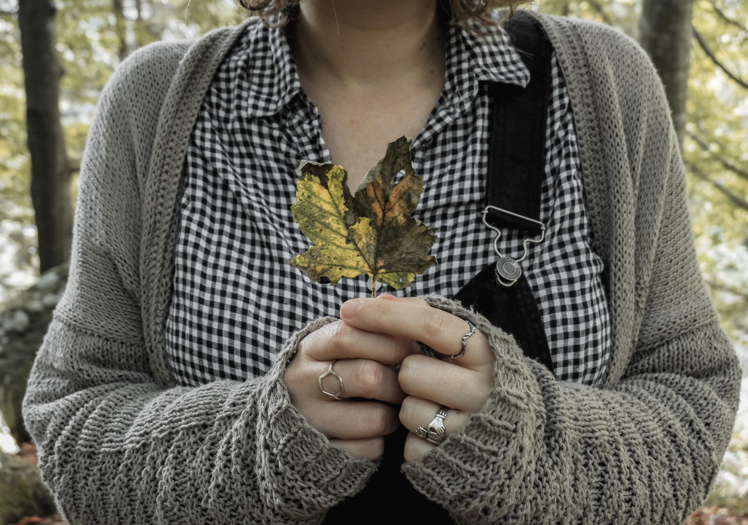 Autumn Walk (14).jpg
