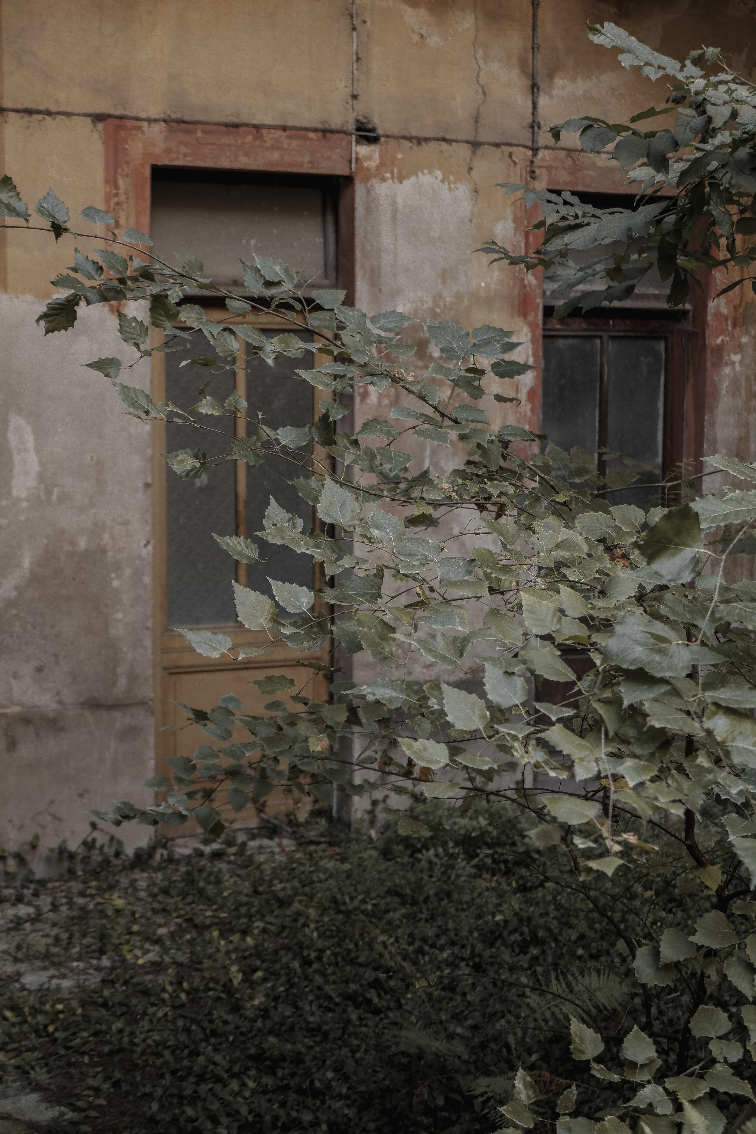Autumn Walk (38).jpg