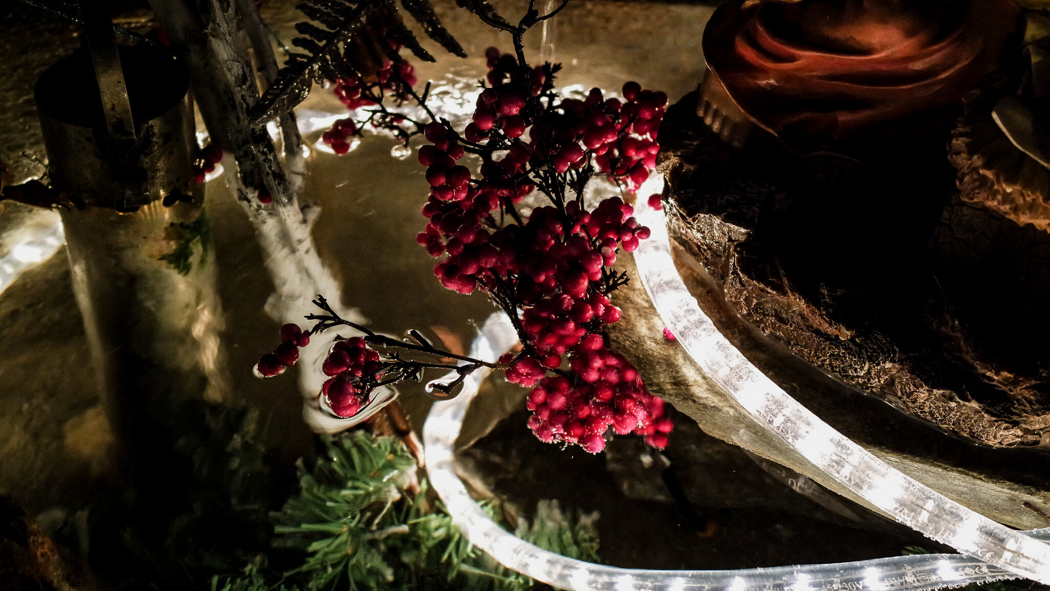 Bard Natale 2015 (1).jpg