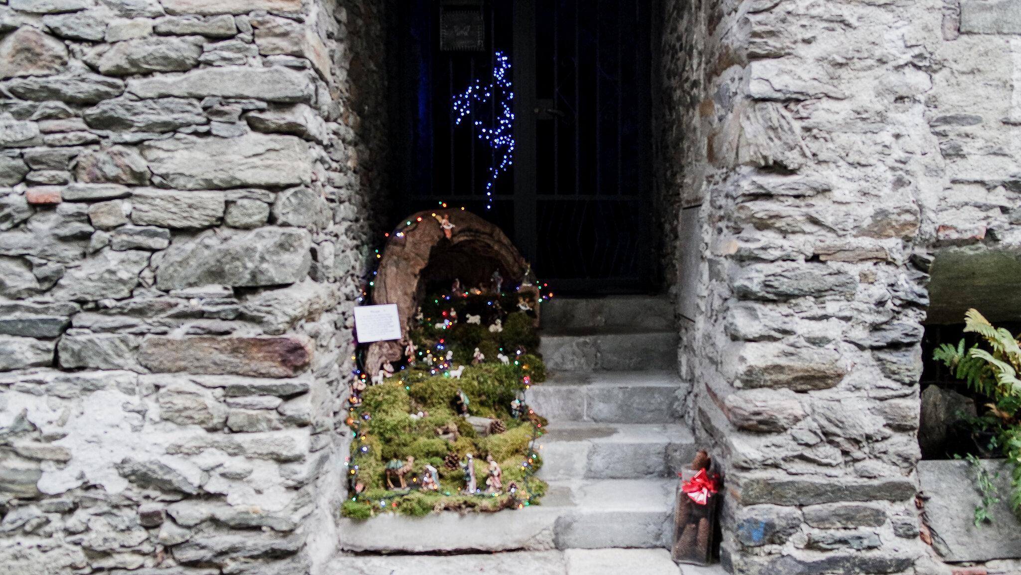 Bard Natale 2015 (6).jpg