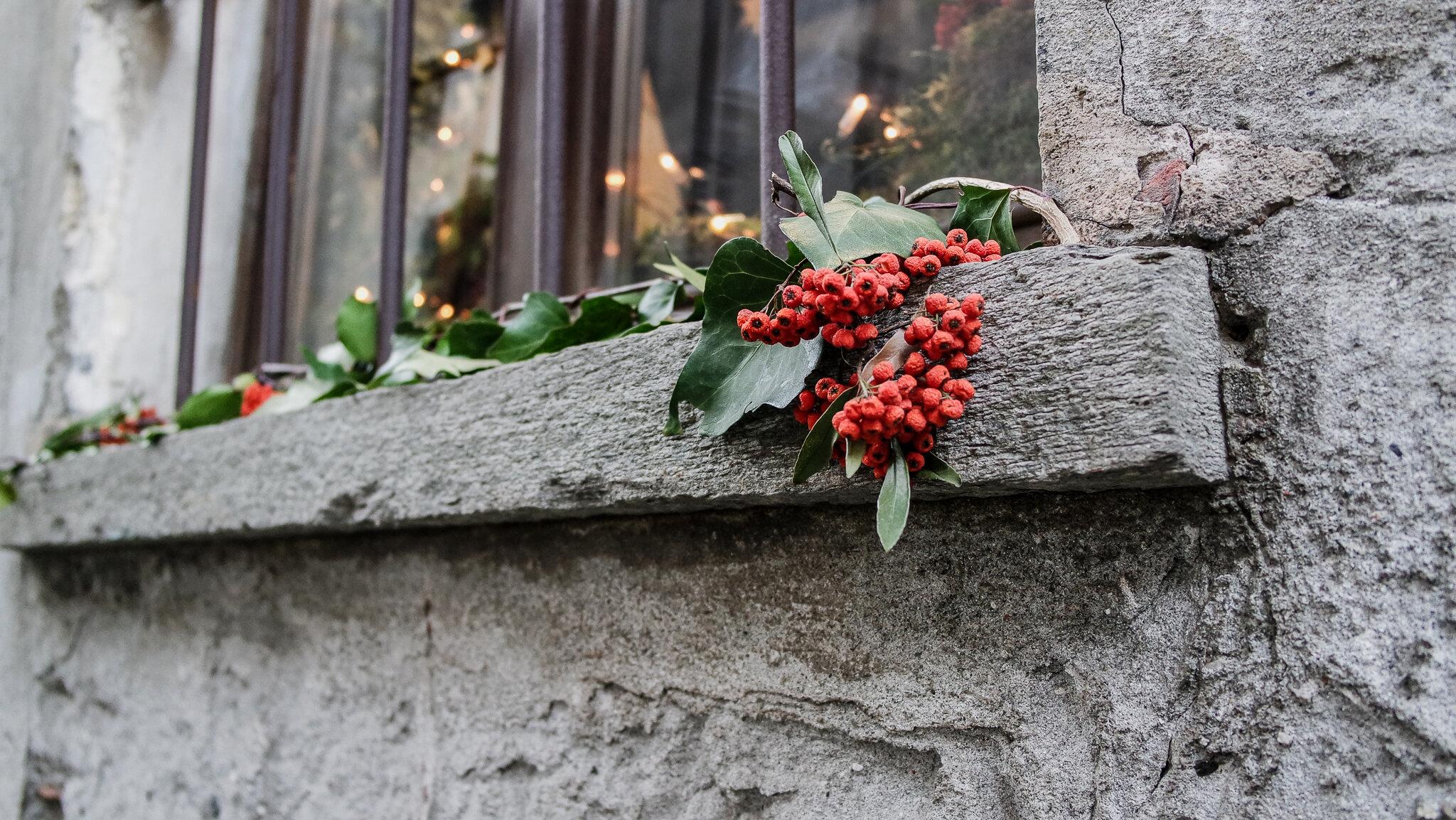 Bard Natale 2015 (13).jpg