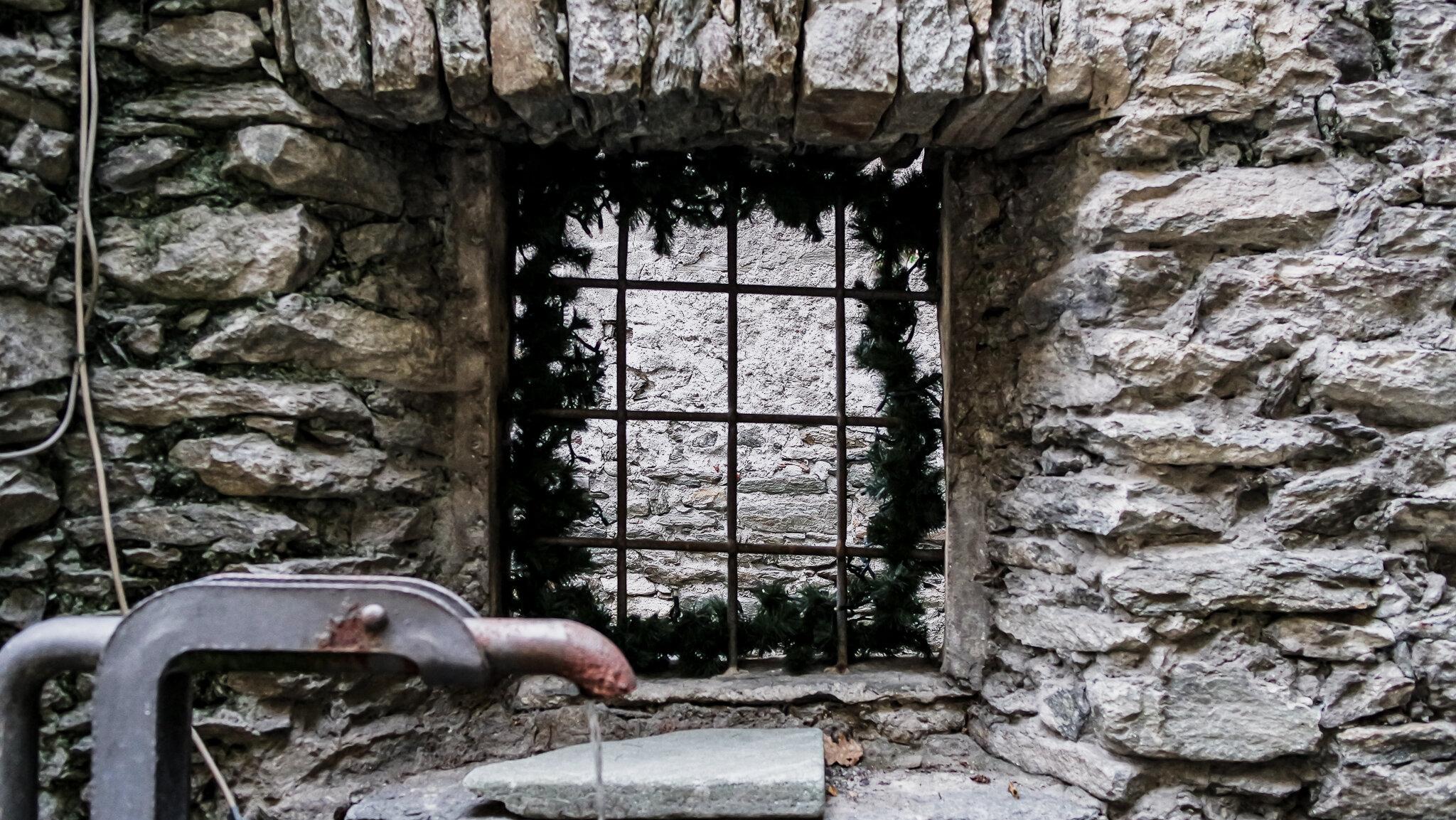 Bard Natale 2015 (14).jpg