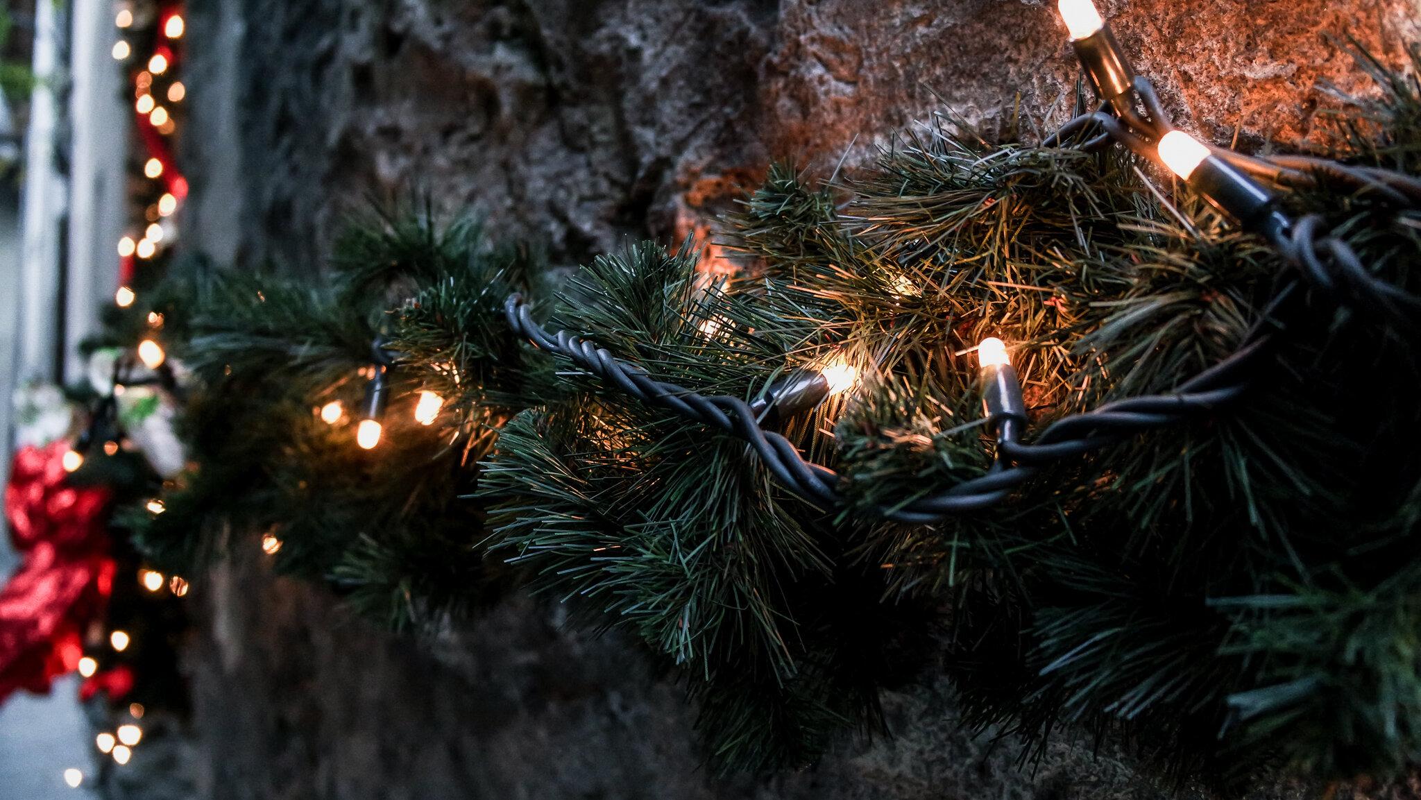 Bard Natale 2015 (28).jpg