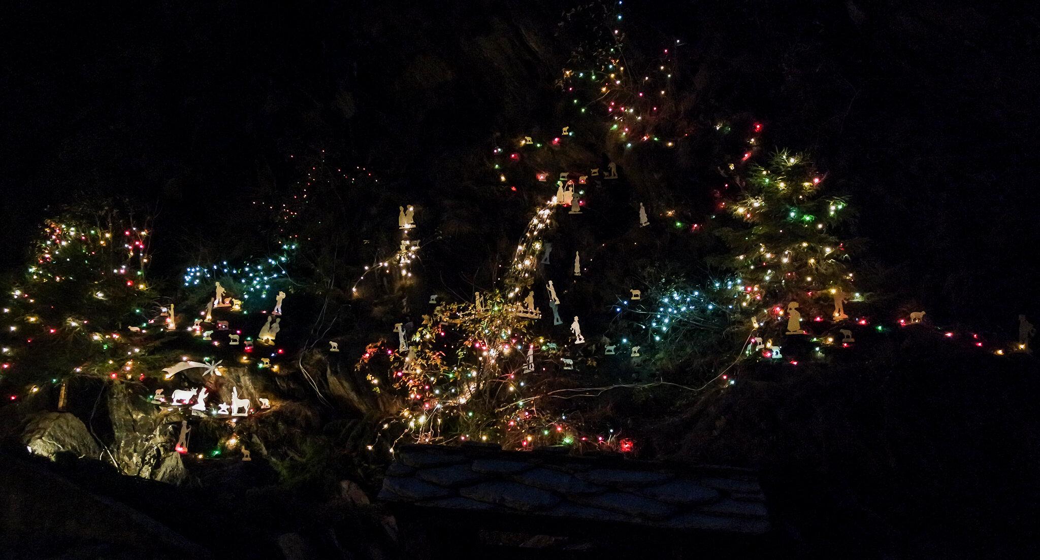 Bard Natale 2015 (31).jpg