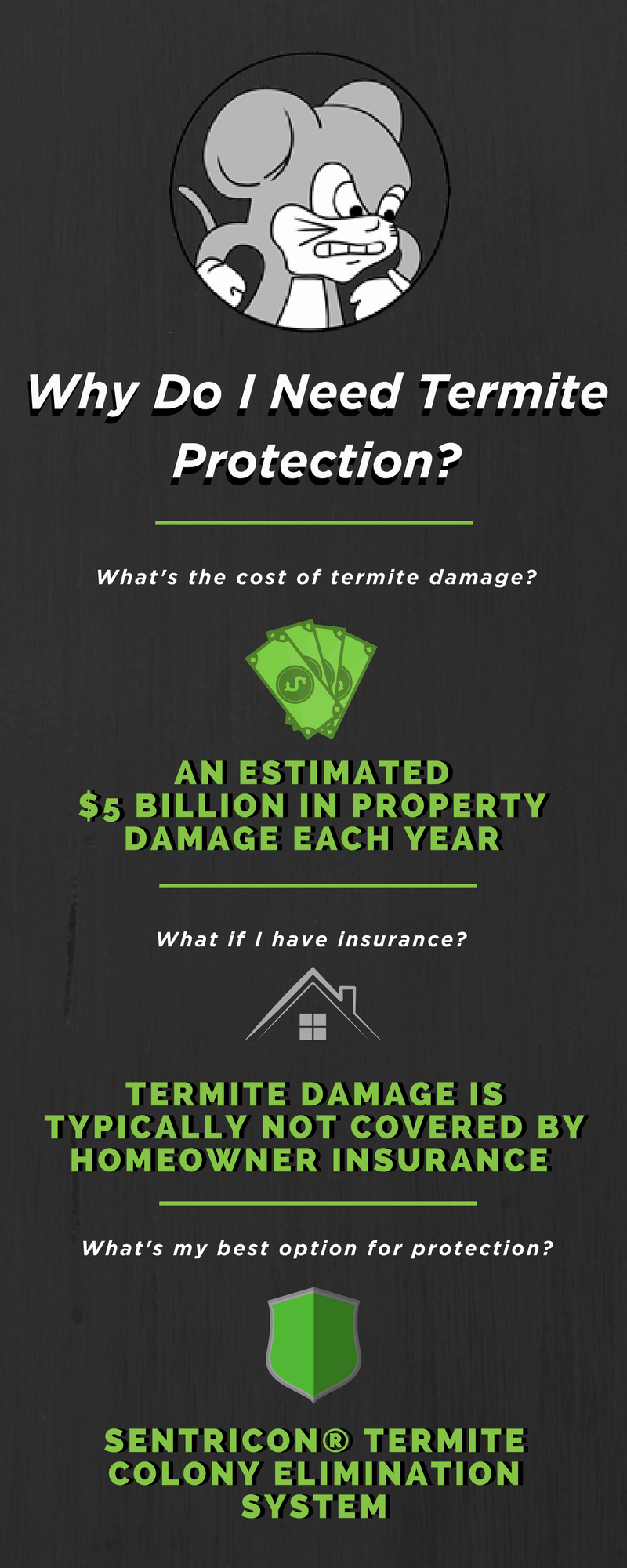 Termite Protection.png