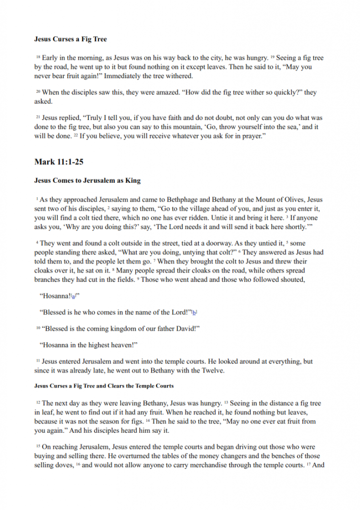 25.-Jesus-Goes-to-Jerusalem-lessonEng_005-724x1024.png