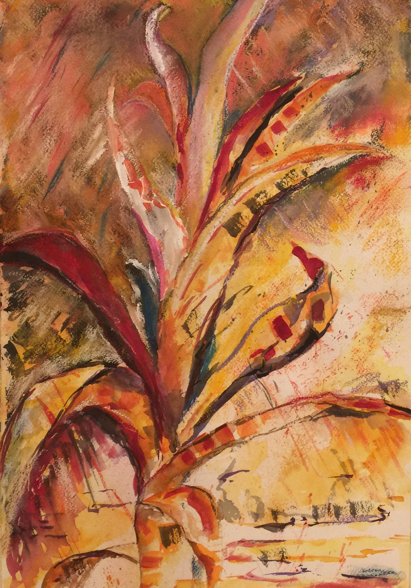 Vriesea Bromeliad.jpg