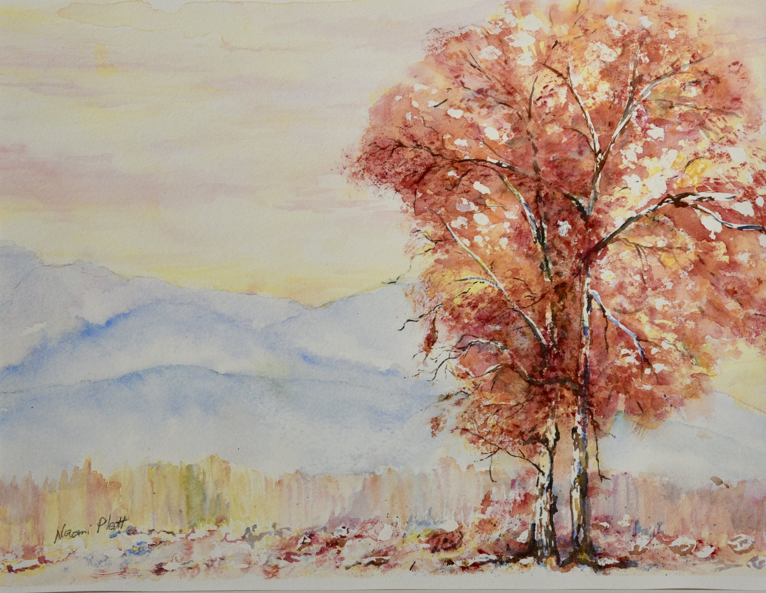 Autumn from the distance_11x14_110.jpg