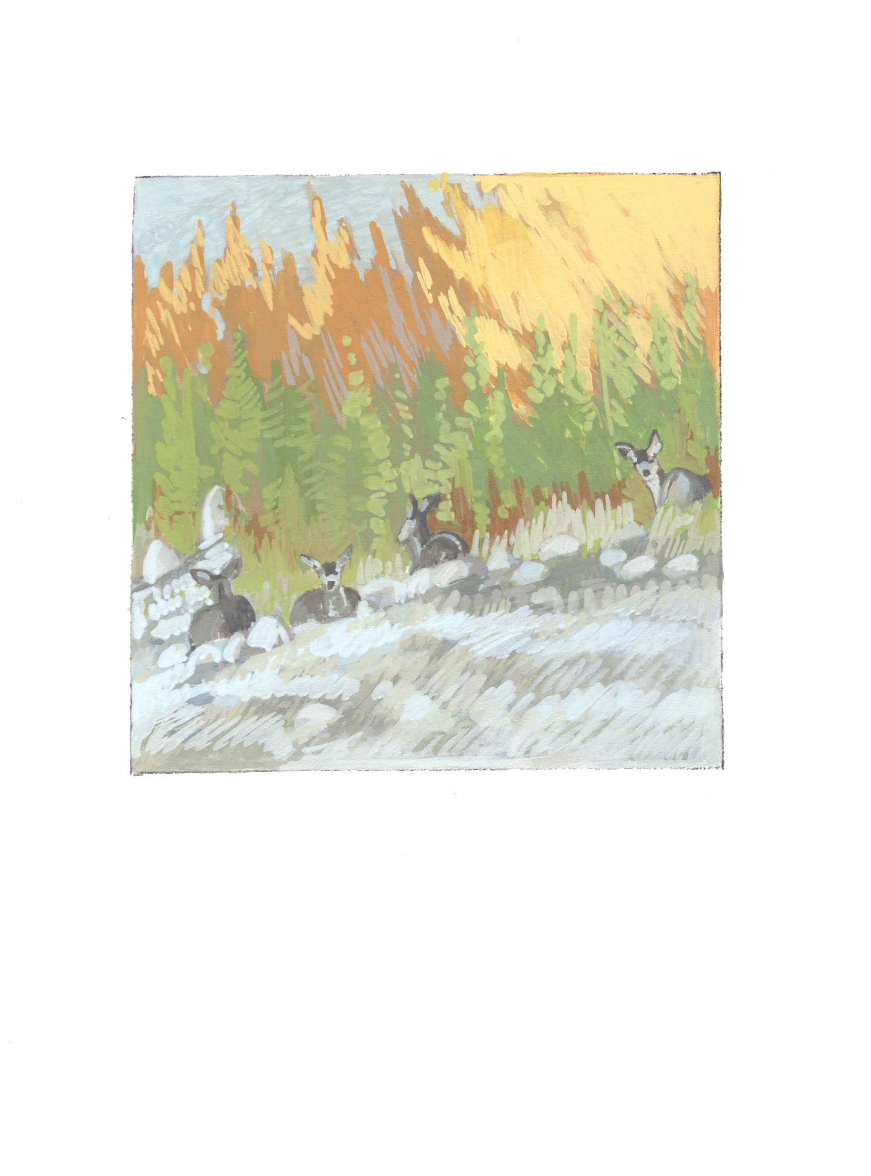 Fall Reeds & Mule Deer