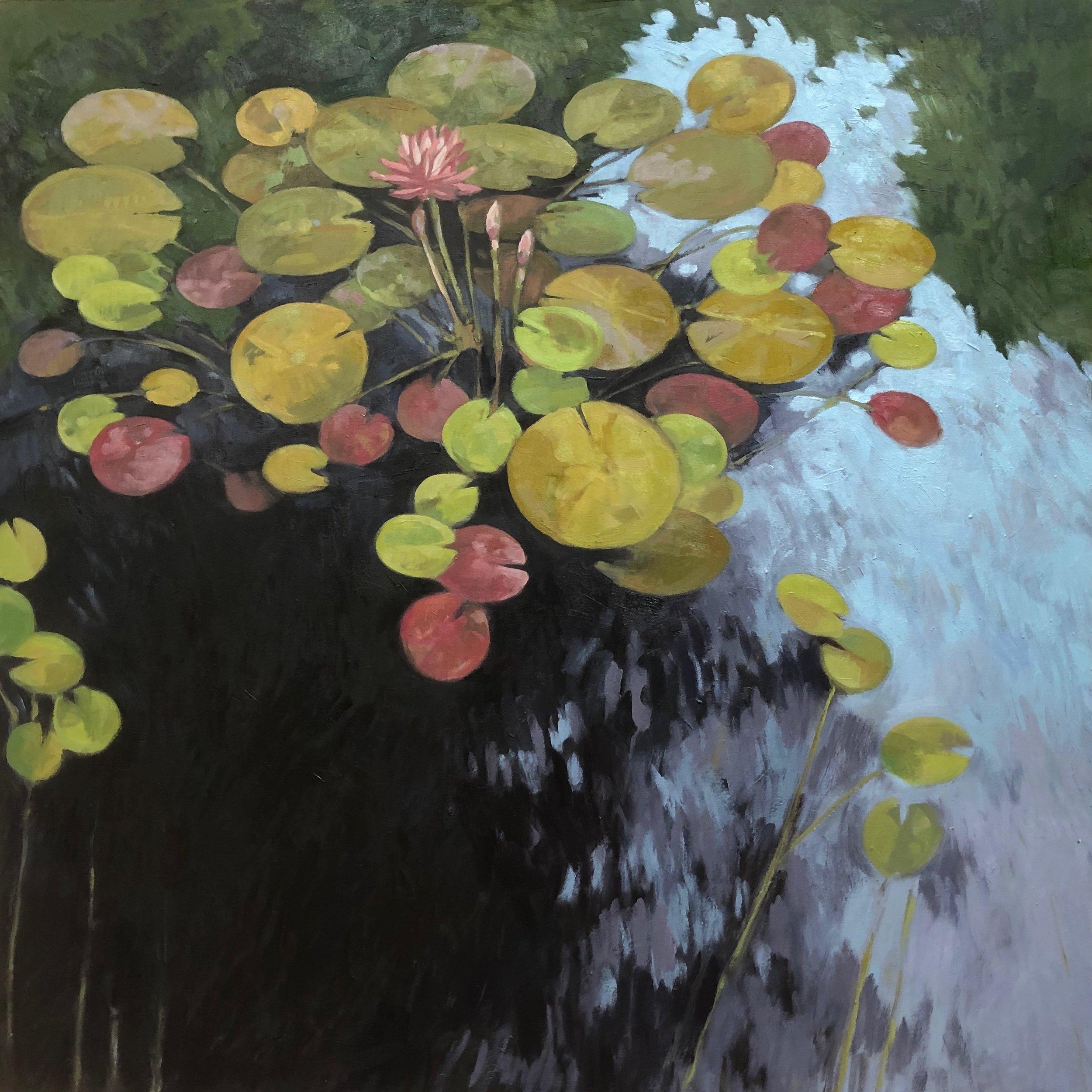 """Lotus  30x30"""" oil on birch panel ©N Strasburg"""