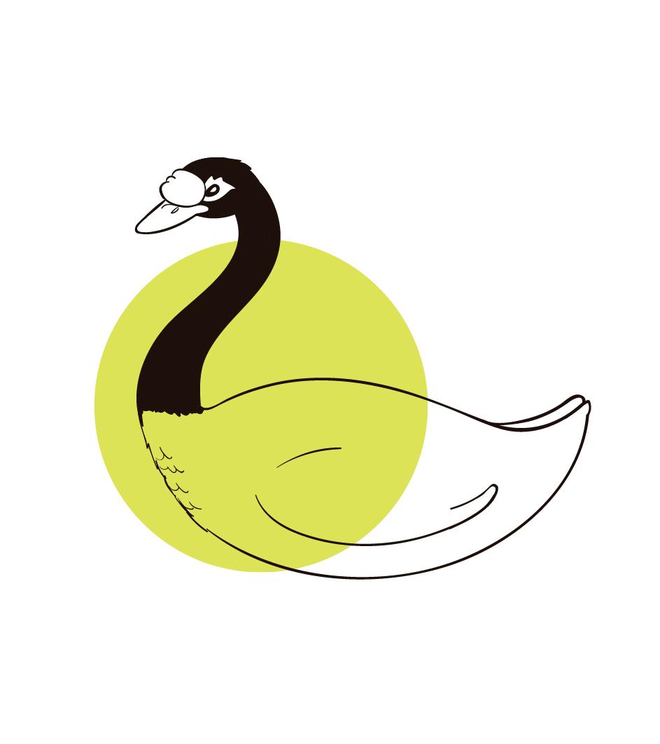 Cisne Negro -