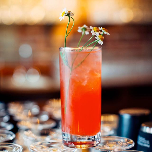 Our Wildflower cocktail is the perfect summer refresher. Isn't she pretty too? Photo: @zoomtheory  #barservice #barcatering #weddingbar #ocbar #labars #mobilebar #mobilebartending