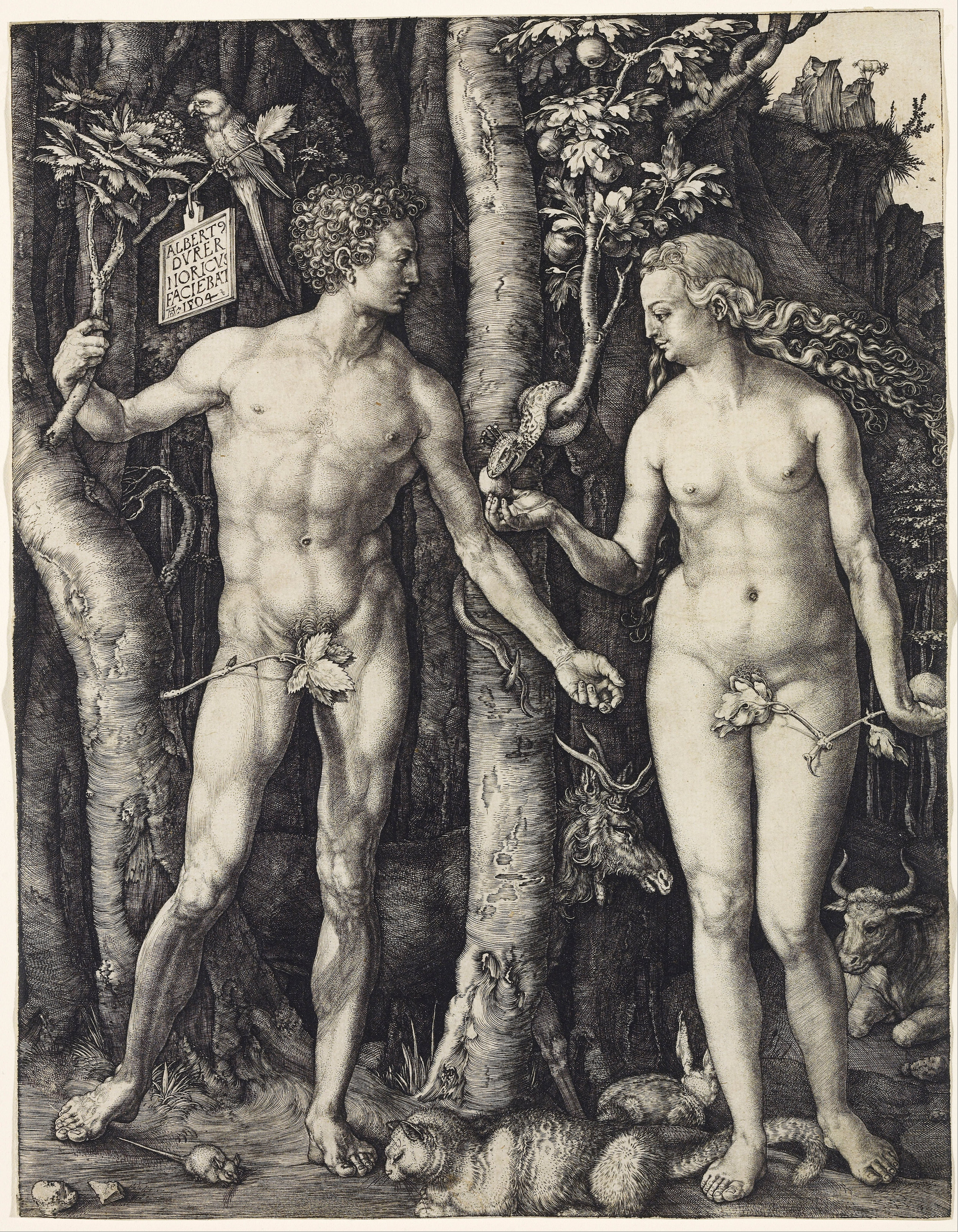 """Albrecht Dürer.  Adam and Eve . Engraving. 9 7/8 x 7 7/8"""". 1504."""