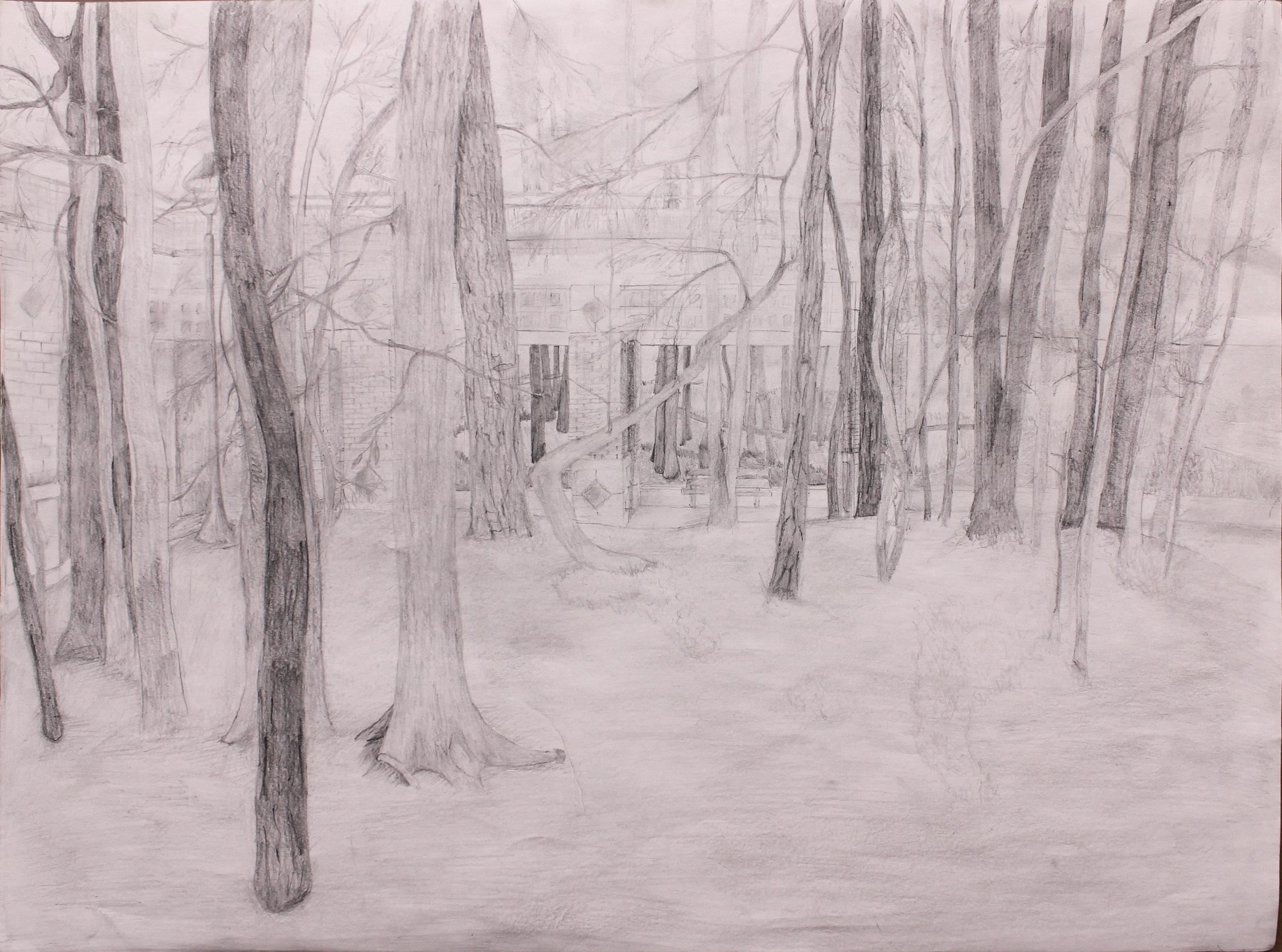 Drawing 1 - Landscape