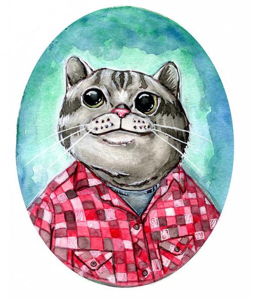 flannel cat