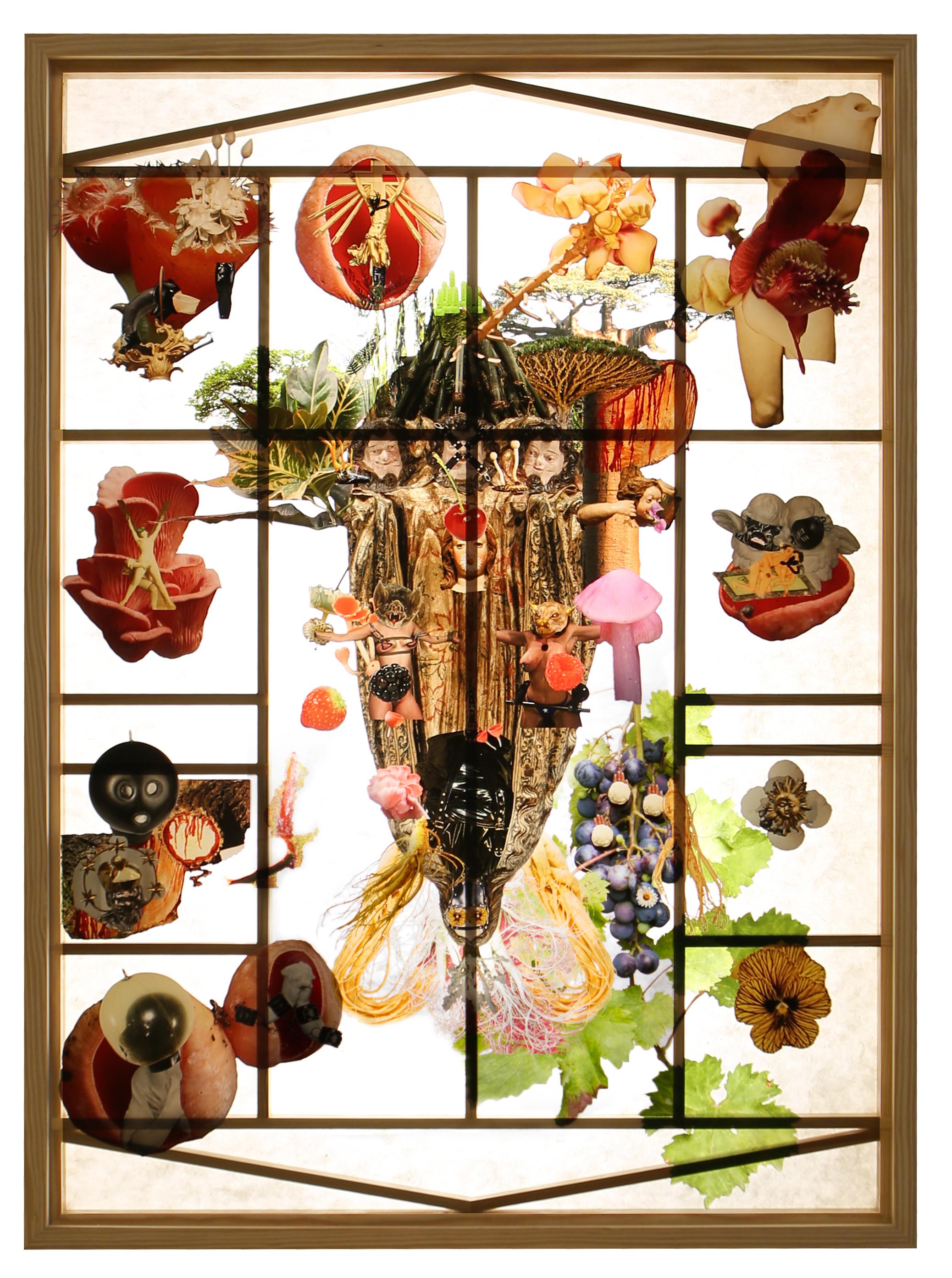 A beautiful tie between the tree  2018 Print on plexiglass, lamp, Soonji (Korean mulberry paper) and wood 100x72x20cm