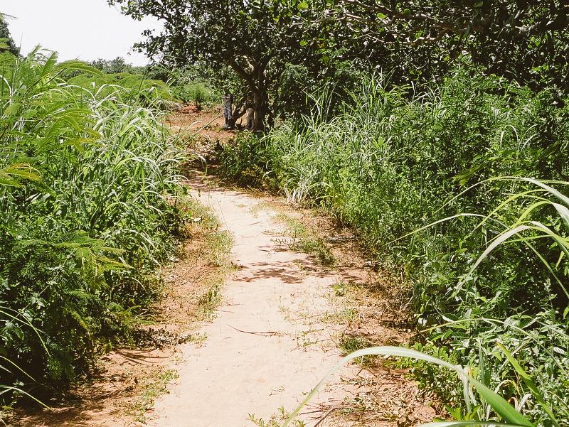 Road before Rehabilitiatiox