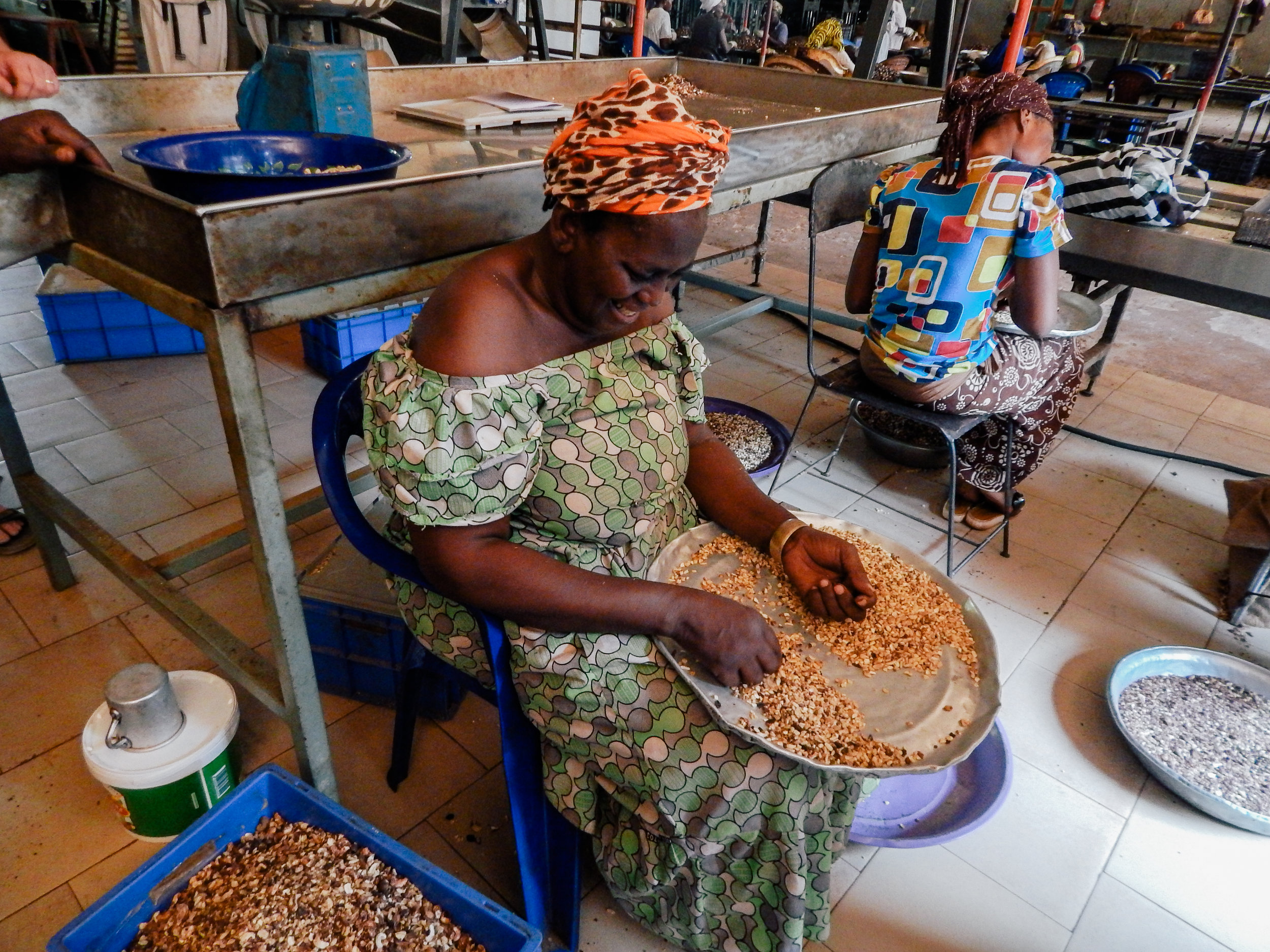 Woman processing the raw nut