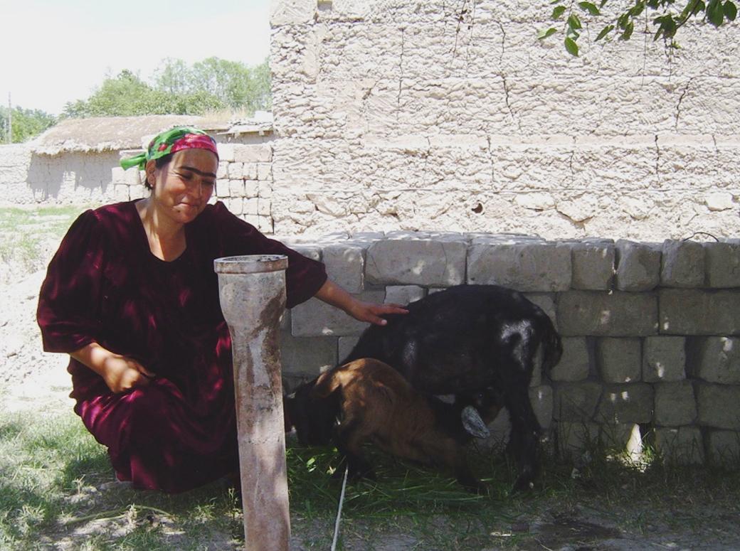 Chornya Kassa loan recipient