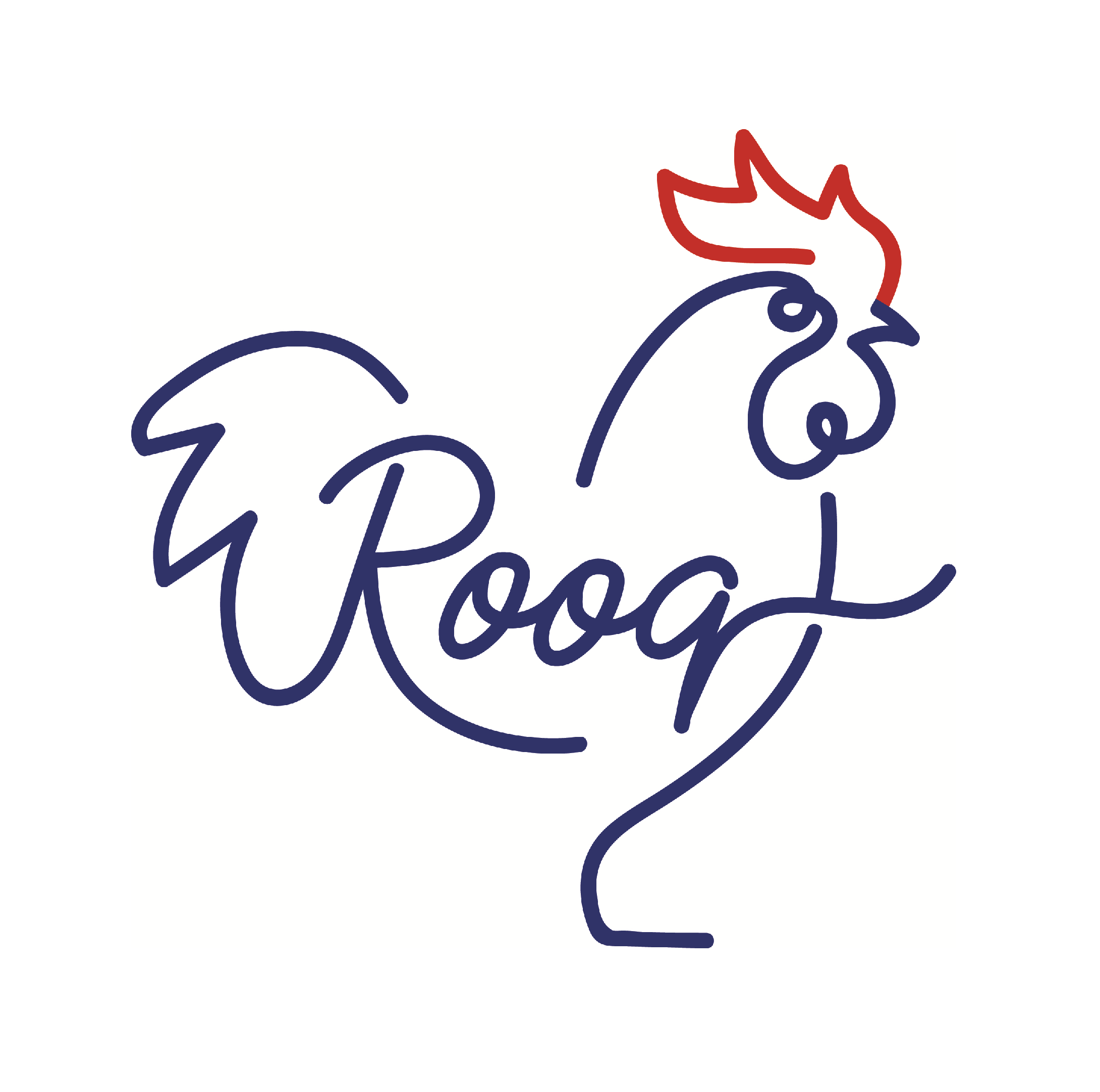 RooqLogoWithBorder.png