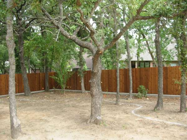Landscape Design & Build - Before