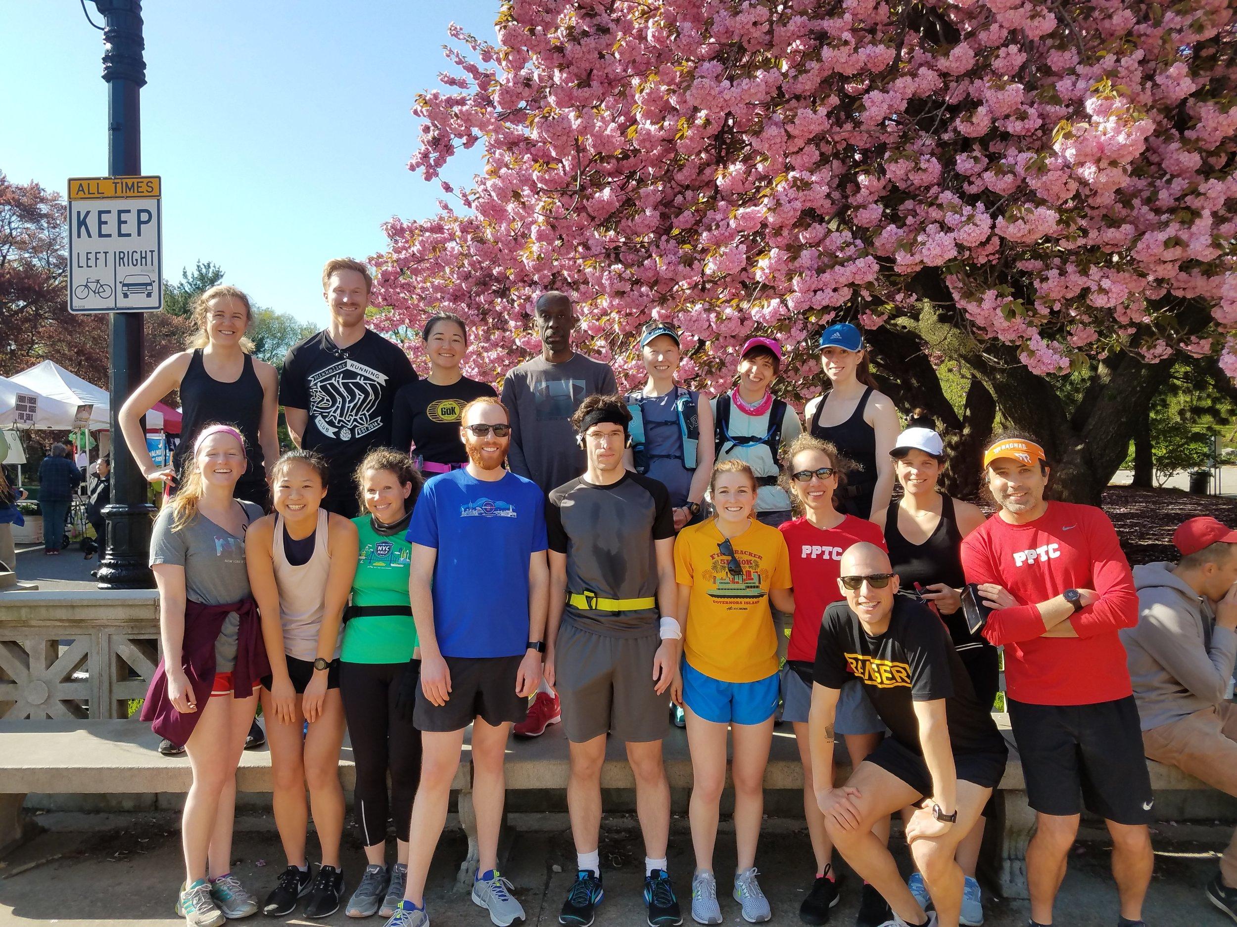 PPTC Cherry Blossom Run.jpg