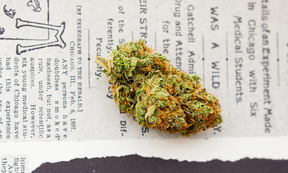 marijuana-justice-act.jpg