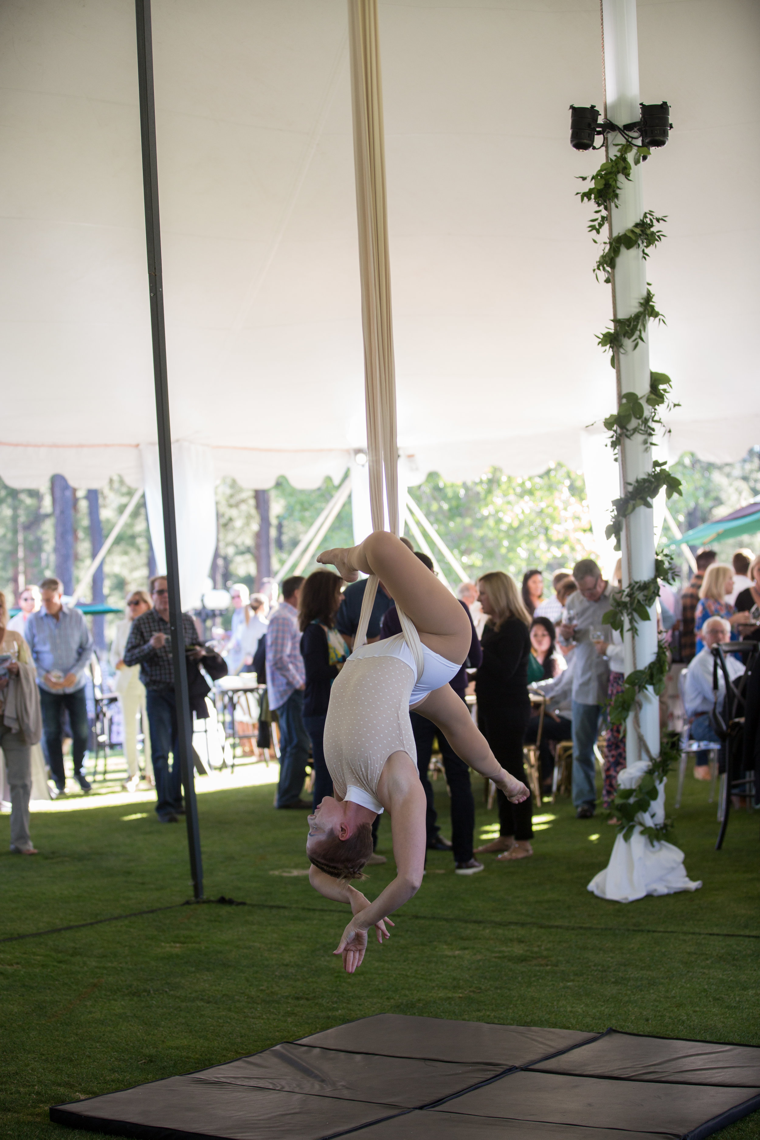 arial-silks-event-entertainment