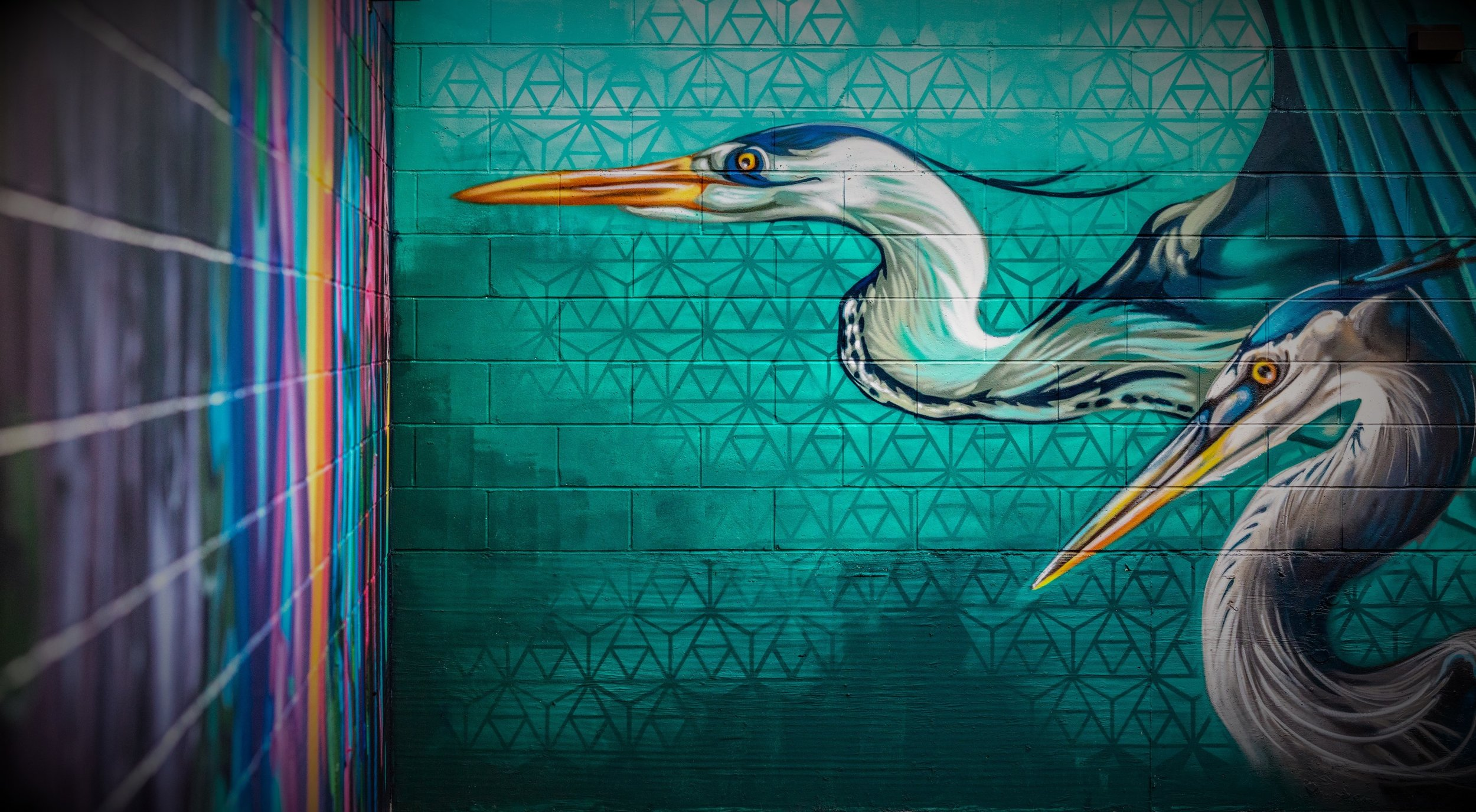 Graffiti House 3 - photo by Max Touhey.jpg