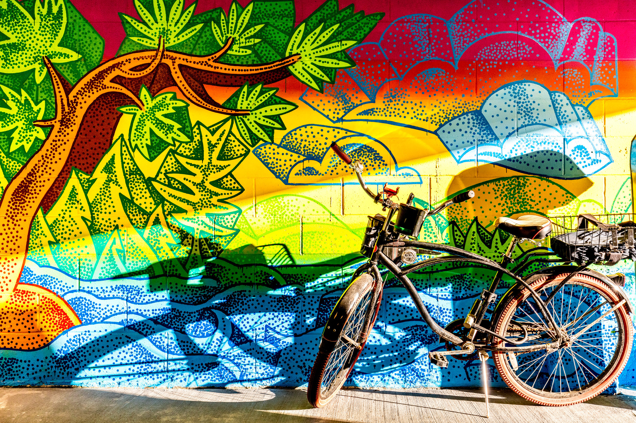 Graffiti House 8 - photo by Max Touhey.jpg