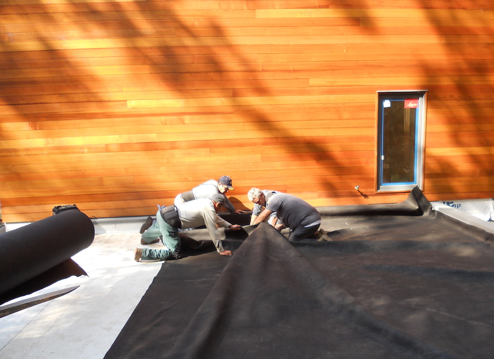 ecogardens-SW-michigan-green-roof-4.jpg