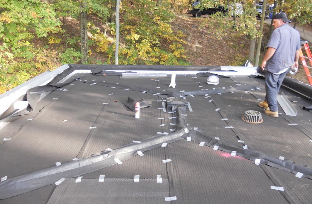 ecogardens-SW-michigan-green-roof-7.jpg