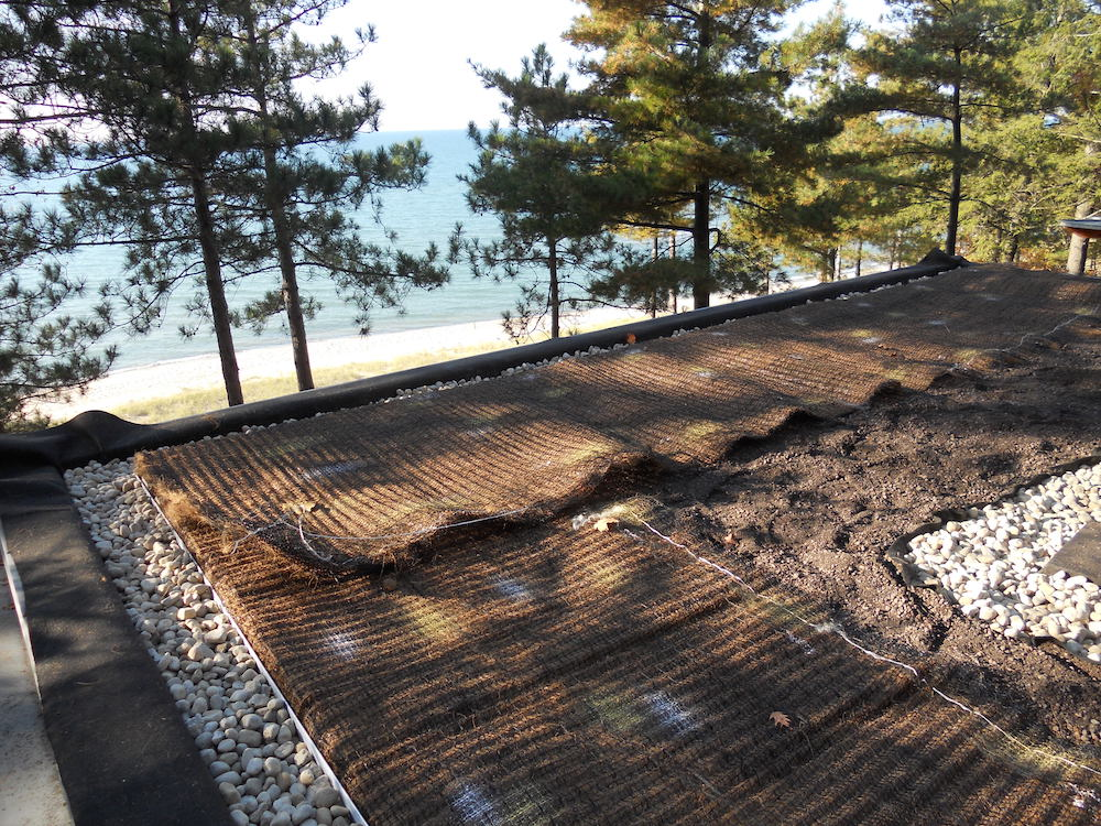 ecogardens-SW-michigan-green-roof-10.jpg