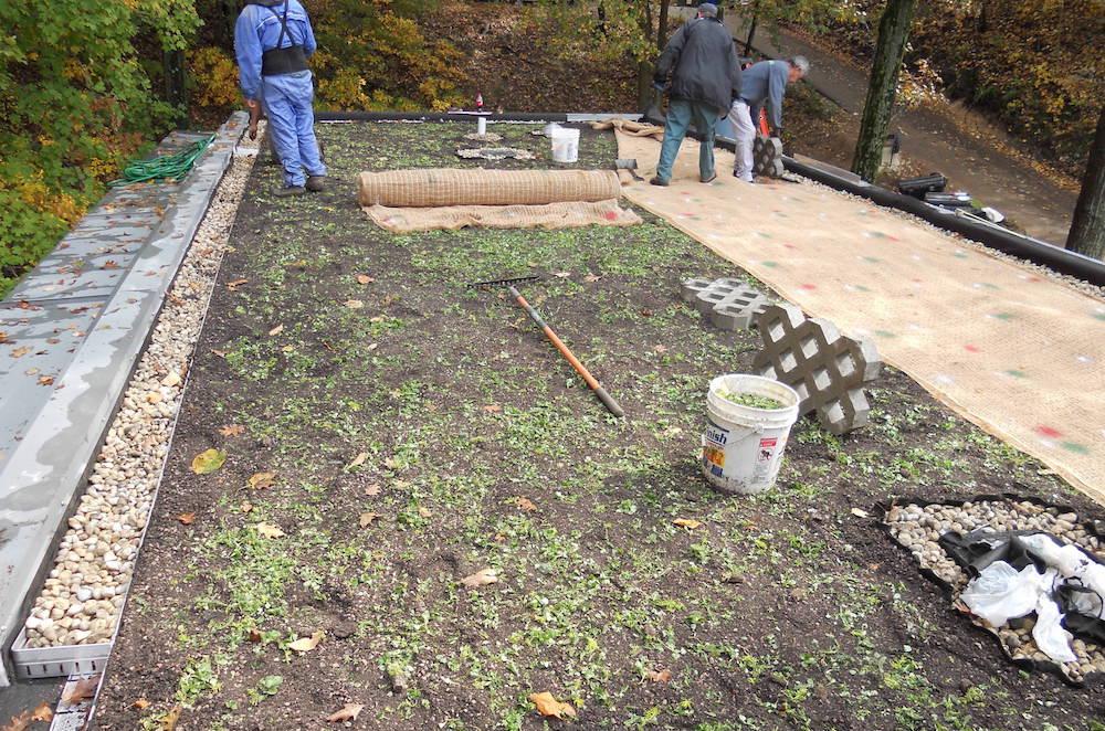 ecogardens-SW-michigan-green-roof-11.jpg