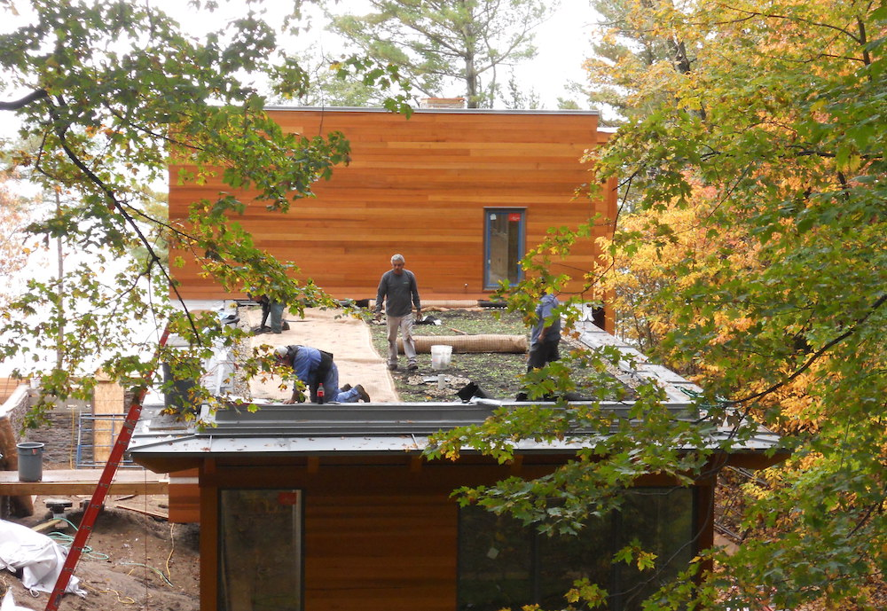 ecogardens-SW-michigan-green-roof-12.jpg
