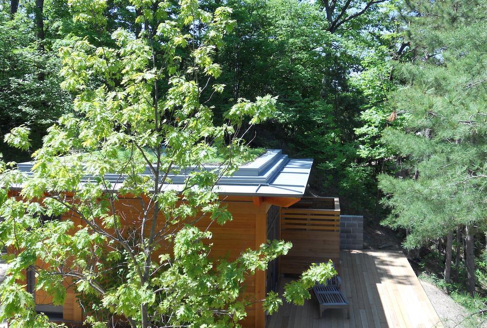ecogardens-SW-michigan-green-roof-16.jpg