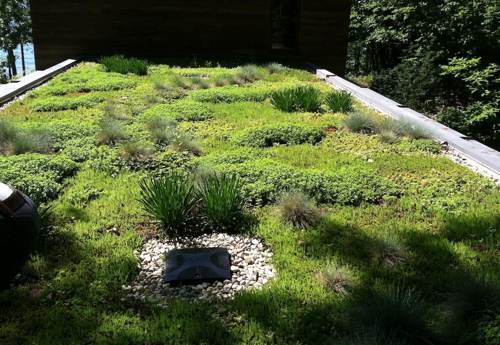 ecogardens-SW-michigan-green-roof-18.JPG