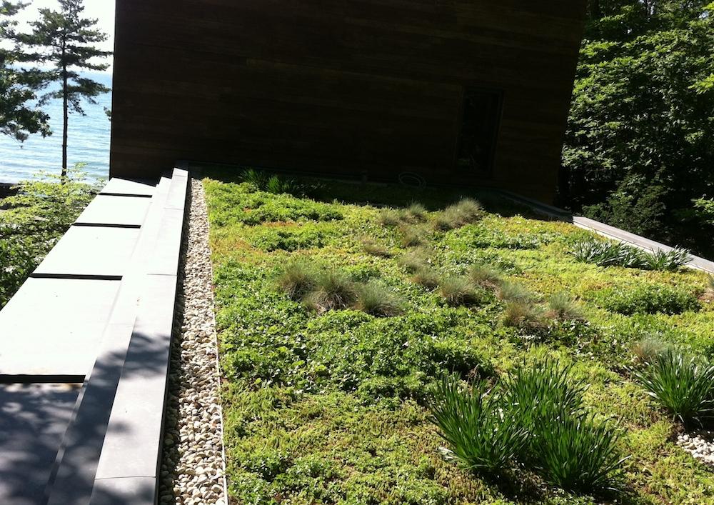 ecogardens-SW-michigan-green-roof-20.JPG