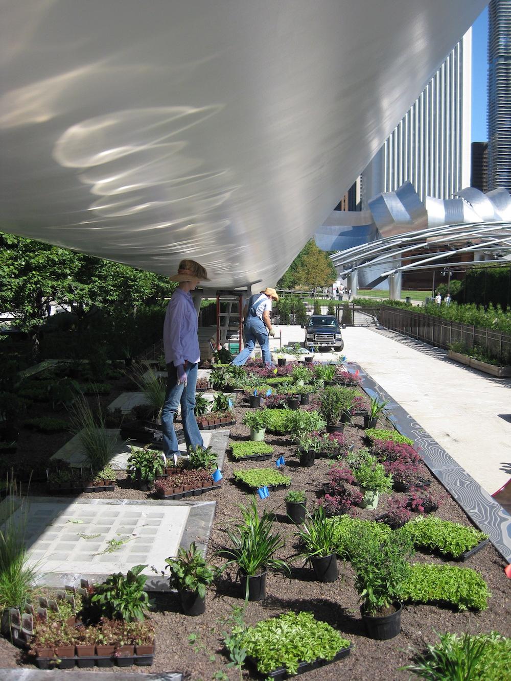 ecogardens-lurie-maintenance-building-6.jpg