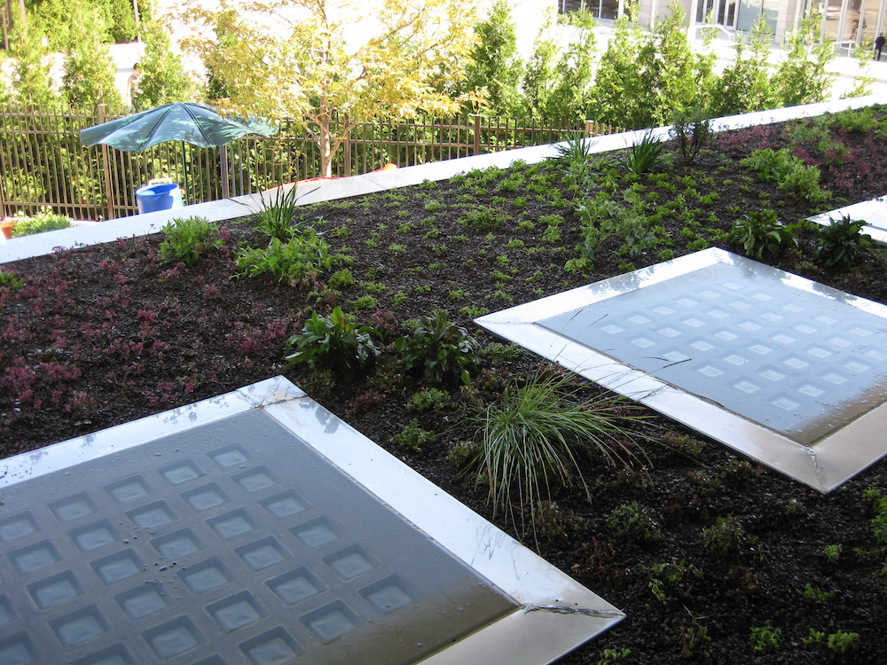 ecogardens-lurie-maintenance-building-9.jpg