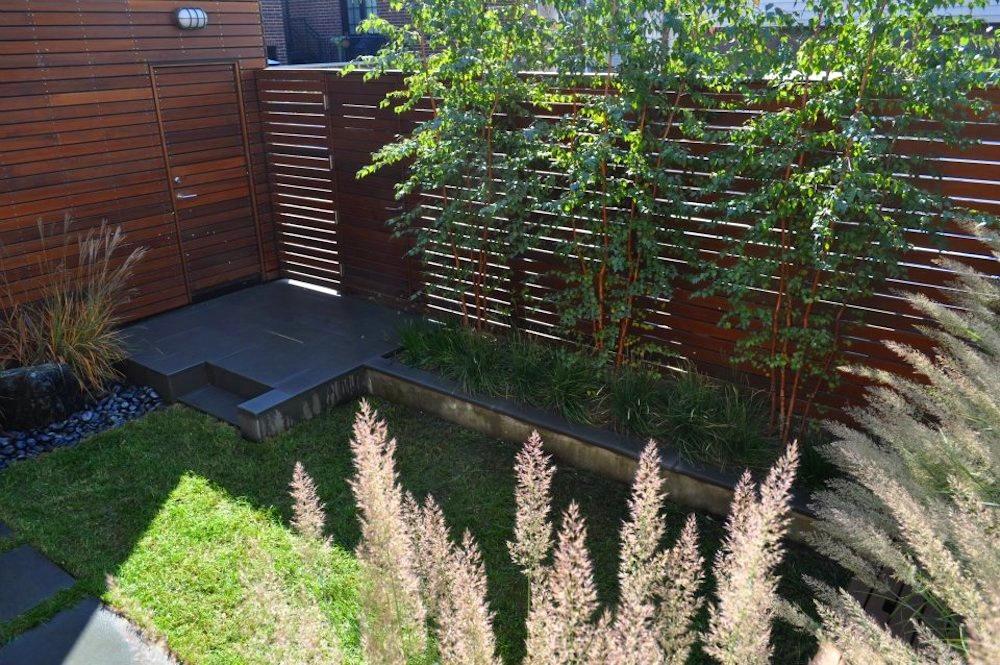 ecogardens-bucktown-modern-sideyard-2.jpg